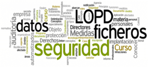 Plan Director Seguridad